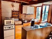 společná místnost dole s kuchyní, posezením + 1x lůžko - chata ubytování Křížanovice