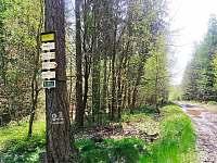 Cyklostezky,houbaření ,nedaleko chalupy - k pronajmutí Podhorní Újezd a Vojice