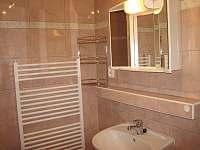 Apartmán BOLEPON - pronájem apartmánu - 12 Luže