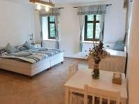 Pokoj č.2 - apartmán s kuchyní přes chodbu - pronájem chalupy Zdoňov