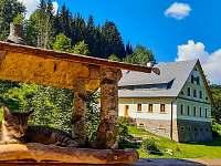 Levné ubytování Koupaliště Petříkovice Apartmán na horách - Dolní Adršpach
