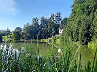 Chata Dvořákův rybník - pronájem chaty - 7 Třebovice v Čechách