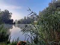 Chata Dvořákův rybník - chata - 23 Třebovice v Čechách