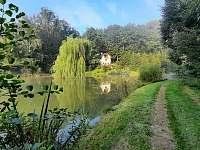 Chata Dvořákův rybník - chata k pronajmutí - 8 Třebovice v Čechách