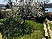 zahrada - chata k pronajmutí Opočno