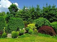 Zahrada - pronájem chalupy Adršpach - Zdoňov