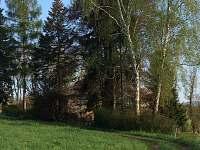 Ruprechtice - vila k pronájmu - 20