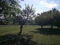 Pohled od chaty - pronájem Skořenice - Vrchovina