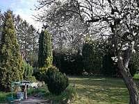 Zahrada - chata k pronájmu Skořenice - Vrchovina