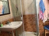 Koupelna se sprchovým koutem a umyvadlem. WC oddělené. - Stradouň