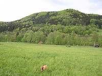 krajina v okolí srubu
