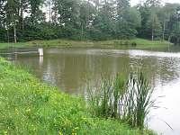 Rybník Herout (možnost rybaření)