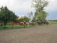 Na koních celá rodina - chata k pronajmutí Proseč