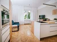 pokoj s vybavený kuchyňským koutem