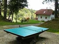 Ping pong v areálu
