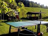 Rekreační dům - rekreační dům k pronájmu - 6 Hlavňov