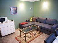 obývací místnost - chata ubytování Přívrat u Litomyšle