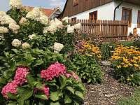 Květiny - chalupa ubytování Kuks