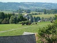 pohled z domku