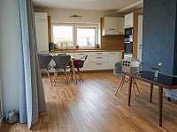 Obývací pokoj - pohled při vstupu - apartmán ubytování Hradec Králové