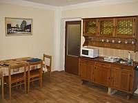 Bor u Skutče - apartmán k pronajmutí - 9