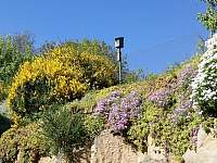 pohled na zahradu - Vítějeves