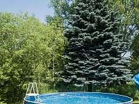 Bazén - chalupa k pronájmu Stárkov - Bystré