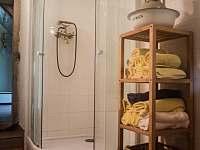 Sprchový kout - chalupa k pronajmutí Stárkov - Bystré