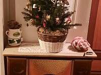 Vánoční atmosféra - Stárkov - Bystré