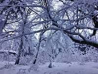 Zimní pohoda - pronájem chalupy Stárkov - Bystré