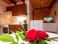 Apartmán II - kuchyň - chalupa k pronajmutí Zlíč