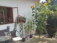 Zahrada - chalupa k pronajmutí Opočno