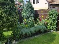 Zahrada - chalupa ubytování Opočno
