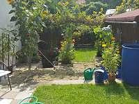 Zahrada - pronájem chalupy Opočno