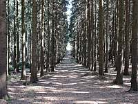 Krásná příroda - Seč