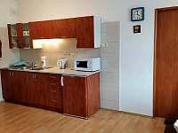 kuchyňský kout s varnou deskou - rekreační dům k pronájmu Hronov