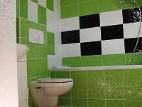 Koupelna s vanou a WC - Heřmánkovice - Janovičky