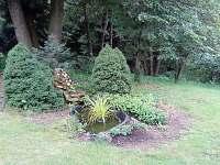 zahrada - Olešnice u Červeného Kostelce