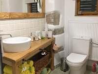 Koupelna - chata k pronájmu Rybná nad Zdobnicí