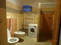 Koupelna dolní ap., WC a bidet - chalupa k pronajmutí Božanov