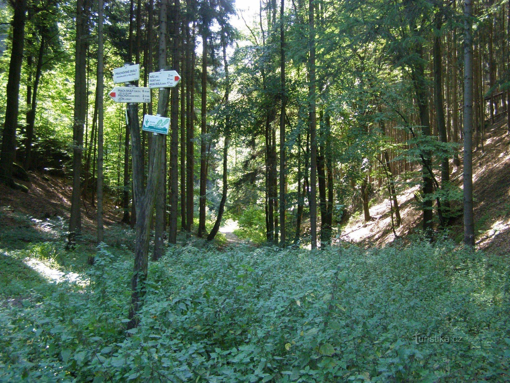 Prachovské skály - turistické rozcestí u koupaliště U Pelíška