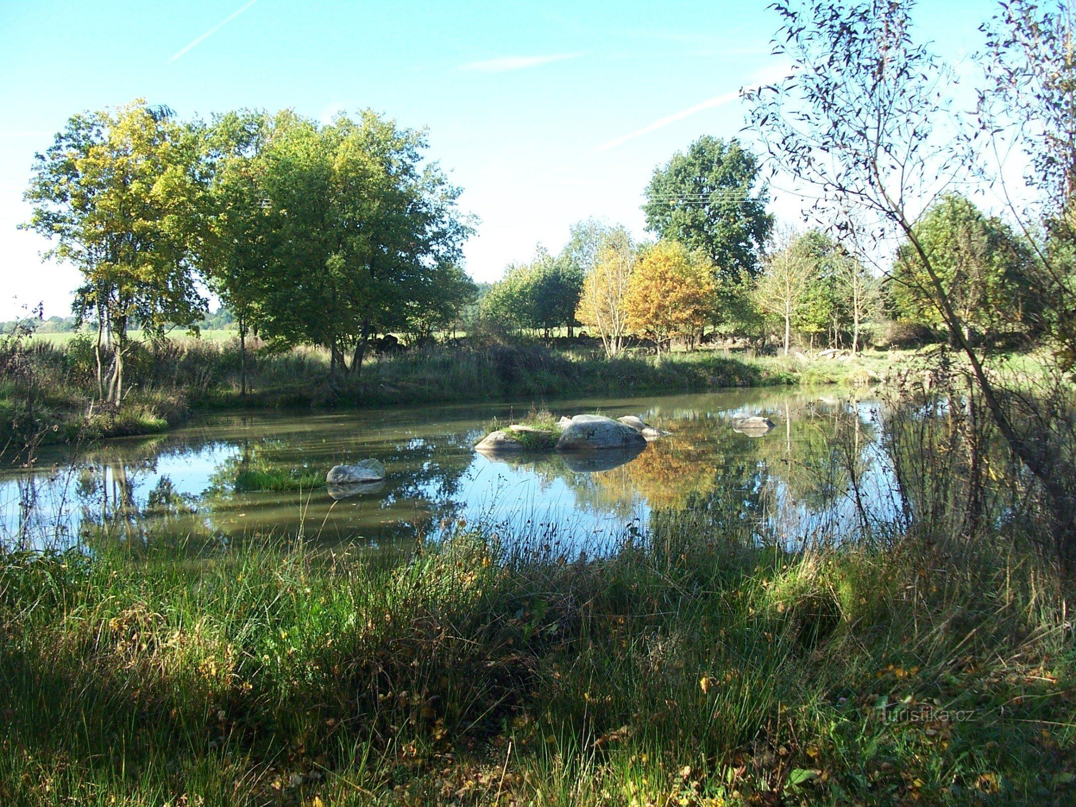 Rybníček na Borkách