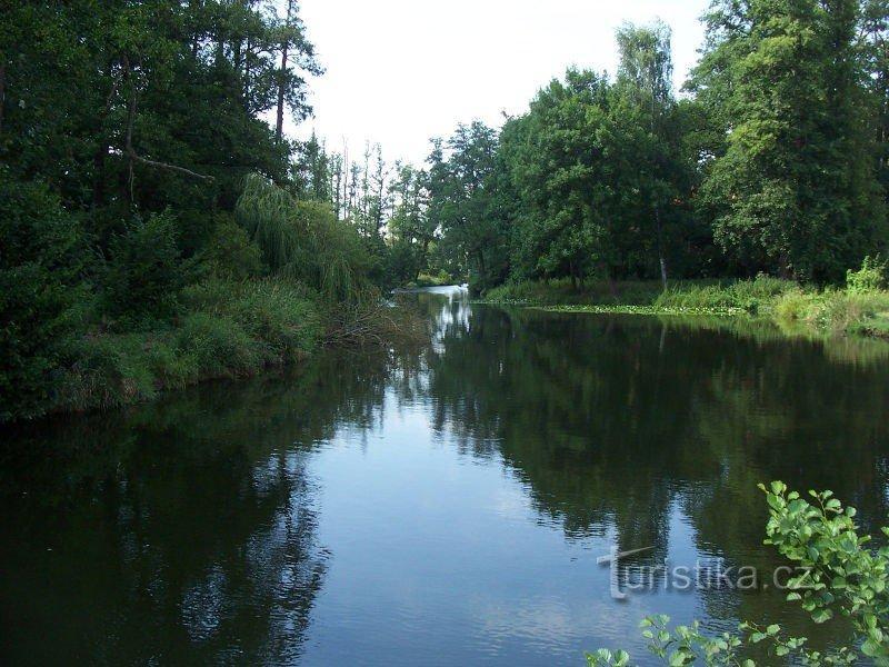 Zámecký rybník v Blatné