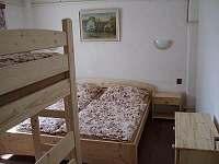Škrdlovice - apartmán k pronájmu - 6