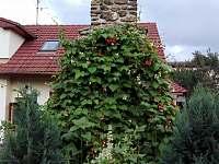 Rekreační dům k pronajmutí - chalupa - 27 Horní Cerekev