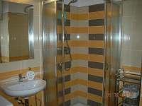 Chalupa Svratka - koupelna - ubytování Svratka