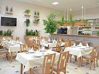 Restaurace - apartmán k pronájmu Sázava