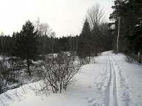 Zima - Tři Studně