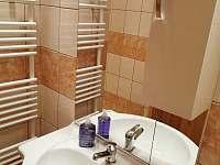 Malý apartmán - koupelna - k pronajmutí Vříšť