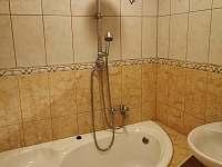 Velký apartmán - koupelna - k pronájmu Vříšť
